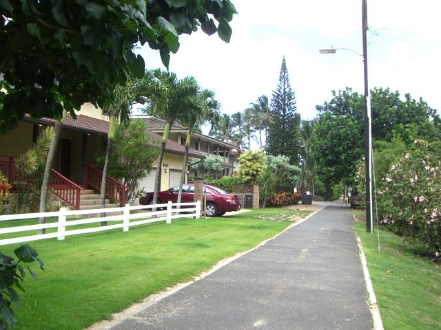 海沿いの家々、素敵ですね