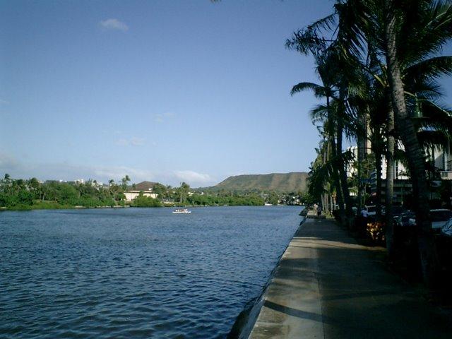 ホテルの前のアラワイ運河