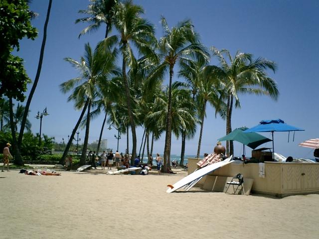 普通のビーチ
