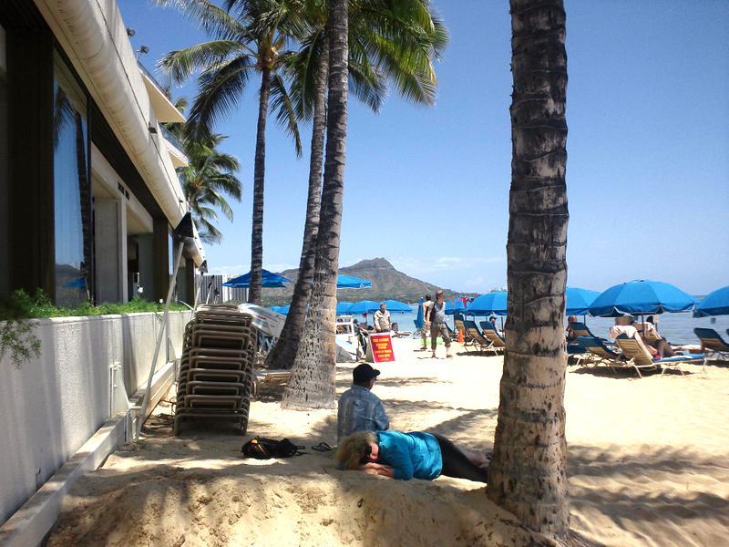 目の前のビーチ。木陰で休むも良し。