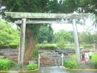 Liliuokalani Park&am...