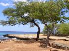 Oahu Wast Coast _Hwy...